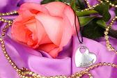 Vacker rosa ros med hjärta — Stockfoto