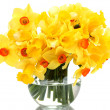Stock Photo: Beautiful yellow daffodils in transparent vase isolated on white