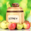 Honey and apples with cinnamon on natural background - Stock Photo