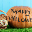 Halloween pumpkin on grass on blue background — Stock Photo