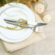 Beautiful christmas setting, close up — Stock Photo #15843977