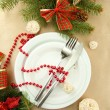 Beautiful christmas setting, close up — Stock Photo #15843997
