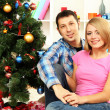Young happy couple near a Christmas tree at home — Stock Photo #15845473