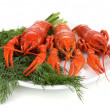 Stock Photo: Tasty boiled crayfishes with fennel on plate isolated on white