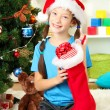 Little girl holding toy near christmas tree — Stock Photo #15987613