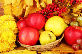 Autumnal composition with yellow leaves, apples and grape background — Stock Photo