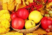 黄色の葉、リンゴとブドウの背景と紅葉の構成 — ストック写真