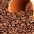 Coffee beans and cup close-up — Stock Photo #16235147