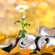 Garbage with growing flower. Environmental conservation concept — Stock Photo #16236185