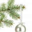 Christmas ball on fir tree, isolated on white - Foto Stock