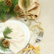 Beautiful christmas setting, close up - Foto de Stock