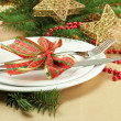 Beautiful christmas setting, close up - Foto Stock