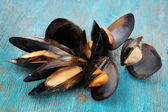 Mussels in shell on blue wooden table — Stock Photo