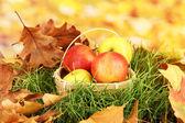 Pommes dans le panier en osier sur herbe sur fond clair — Photo