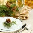 Beautiful christmas setting, close up — Stock Photo #16303183