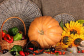 Excellent autumn still life with pumpkin on sacking — Stock Photo