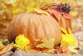 Pumpkins and autumn leaves, on yellow background — Stock Photo