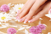 Woman hands with french manicure and flowers in bamboo bowl with water — Stock Photo