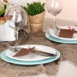 Rustic table setting — Stock Photo #16605179