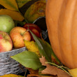 Excellent autumn still life with pumpkin on wooden table on wooden background close-up — Stock Photo