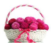 Flores rosa aster en canasta, aisladas en blanco — Foto de Stock