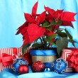 Beautiful poinsettia with christmas balls and presents on blue fabric background — Stock Photo #16779319
