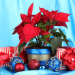 Beautiful poinsettia with christmas balls and presents on blue fabric background — Stock Photo #16779337
