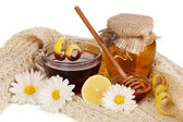 Healthy ingredients for strengthening immunity on warm scarf isolated on white — Stock Photo