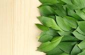 Prachtige groene bladeren, op houten achtergrond — Stockfoto