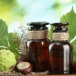 Medicine bottles with chestnuts and leaves, on green background - Lizenzfreies Foto