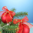 Beautiful christmas composition on blue background — Stock Photo