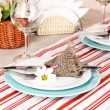 Rustic table setting — Stock Photo #16804583
