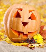 Dýně a podzimní listí, na žlutém podkladu — Stock fotografie