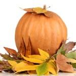 Ripe orange pumpkin yellow autumn leaves isolated on white — Stock Photo #16839051