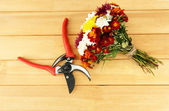 Secateurs with flowers on wooden background — Zdjęcie stockowe