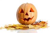 Halloween pompoen en herfst bladeren, geïsoleerd op wit — Stockfoto