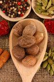 Мускатный орех и другие специи на фоне вретище — Стоковое фото