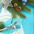 Beautiful christmas setting, close up — Stock Photo #16950045