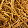 Royalty-Free Stock Photo: Golden hay close-up