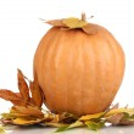 Ripe orange pumpkin yellow autumn leaves isolated on white — Stock Photo #17181359