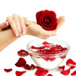 Woman hands with glass bowl of water with petals, isolated on white — Stock Photo