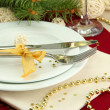Beautiful christmas setting, close up — Stock Photo #17182351
