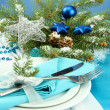Beautiful christmas setting, close up — Stock Photo #17182451