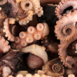 Stock Photo: Tentacles of octopus, macro