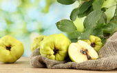 Sweet quinces with leaves, on burlap, on green background — Stock Photo