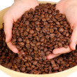 Coffee beans in hands isolated on white — Stock Photo #17212781