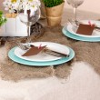 Rustic table setting — Stock Photo #17213285