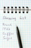 Shopping list in a notebook on white background close-up — Stock Photo