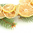 Christmas wreath of dried lemons with fir tree isolated on white - Foto de Stock