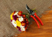 Secateurs with flowers on sackcloth on wooden background — Stock Photo